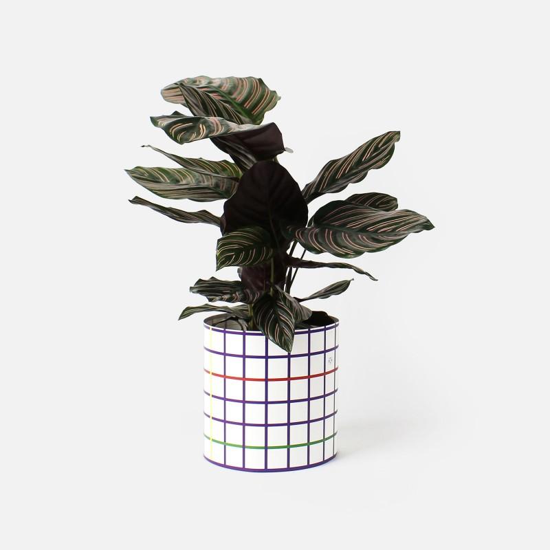 Paper Cover Pot Small - Squared