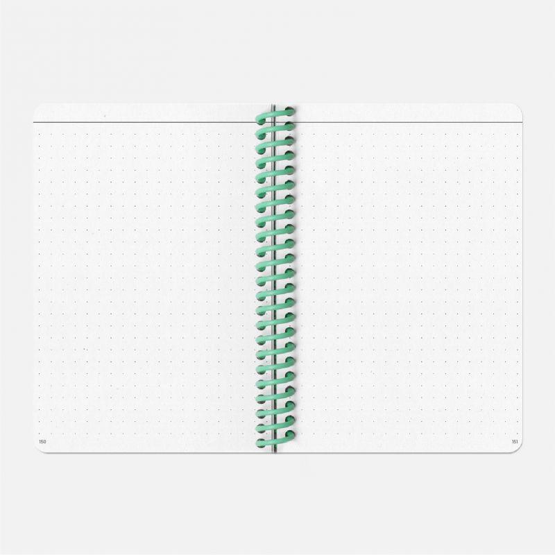 Diary A6 21/22  Vinyle